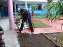 دور التربة في الفلاحة وتعرضها  للتلوث