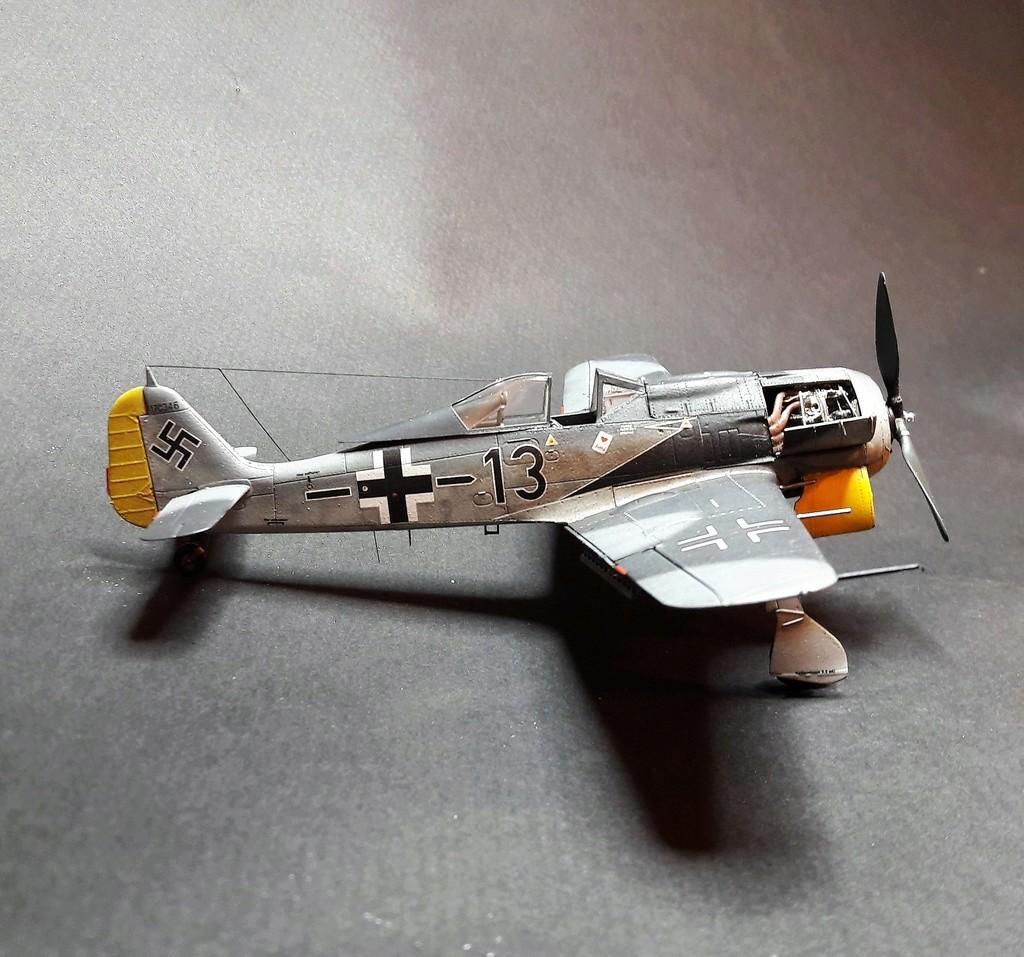 FW 190A8 - EDUARD ROYAL CLASS + Brassin -1/72 + projet diorama (Trois avions terminés) - Page 3 Eduard11
