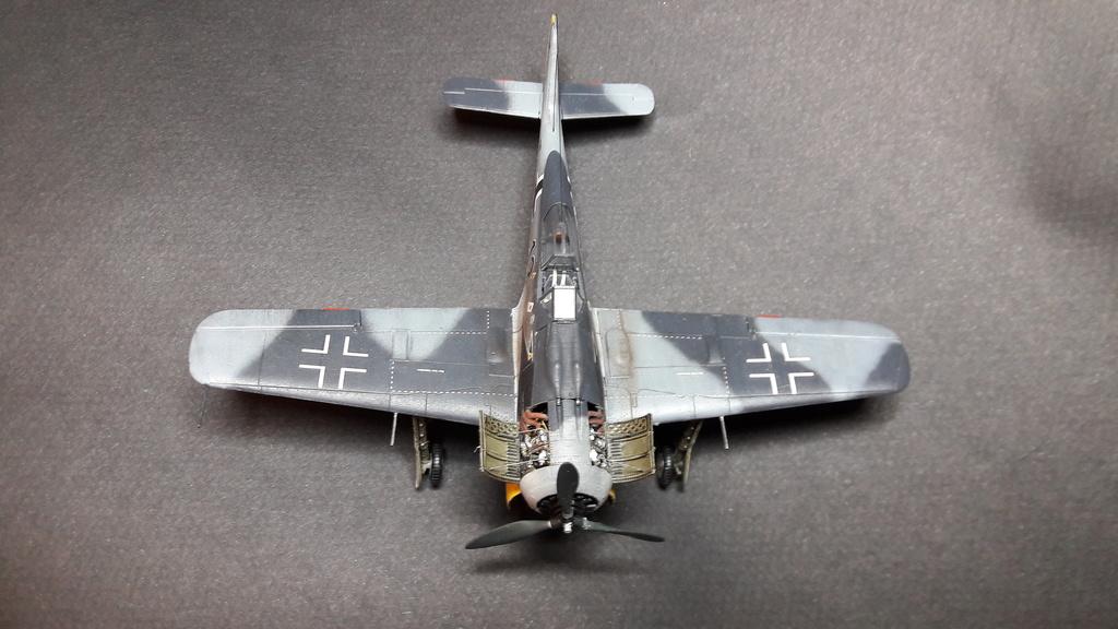FW 190A8 - EDUARD ROYAL CLASS + Brassin -1/72 + projet diorama (Trois avions terminés) - Page 3 Eduard17