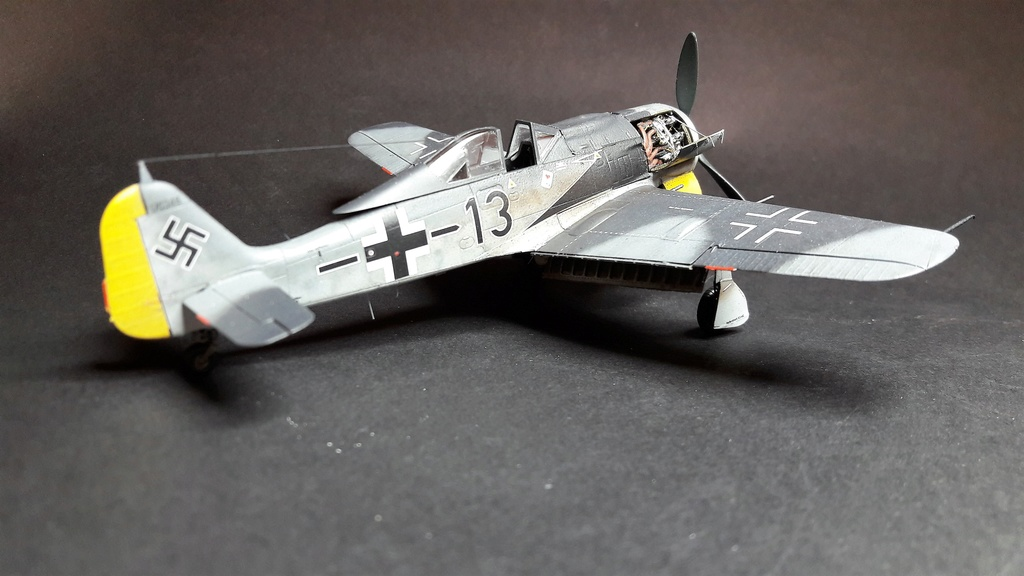 FW 190A8 - EDUARD ROYAL CLASS + Brassin -1/72 + projet diorama (Trois avions terminés) - Page 3 Eduard19