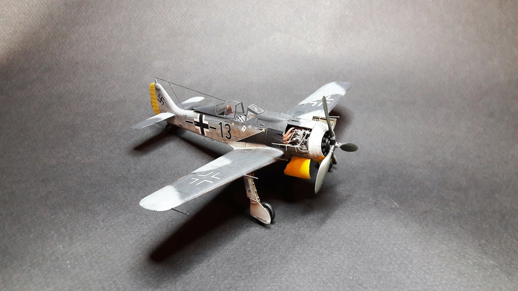 FW 190A8 - EDUARD ROYAL CLASS + Brassin -1/72 + projet diorama (Trois avions terminés) - Page 3 Eduard20