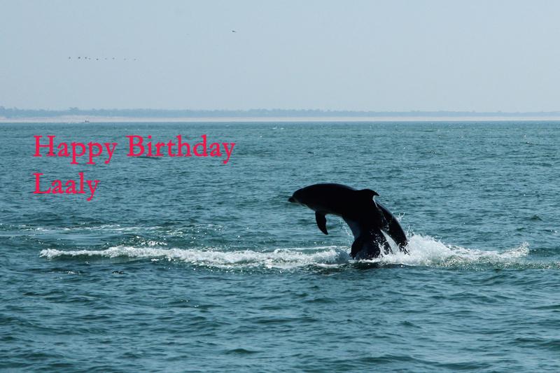 HAPPY BIRTHDAY THREAD - Page 7 Img_5210