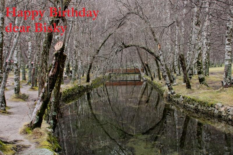 HAPPY BIRTHDAY THREAD - Page 7 Img_8510