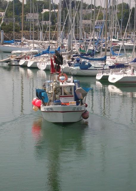 [VIE DES PORTS] Quelques bateaux de pêche (sur nos côtes Françaises) - Page 2 Momo_113