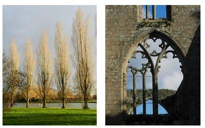 Juxtapositions oulipiennes d'images - Poésie des contrastes Croiss10