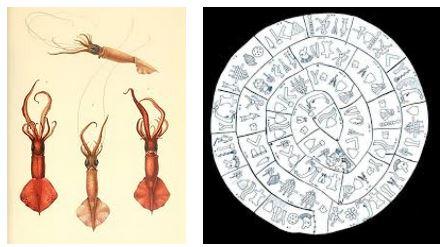 Juxtapositions oulipiennes d'images - Poésie des contrastes Nautil10