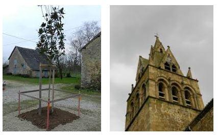 Juxtapositions oulipiennes d'images - Poésie des contrastes Sectio10