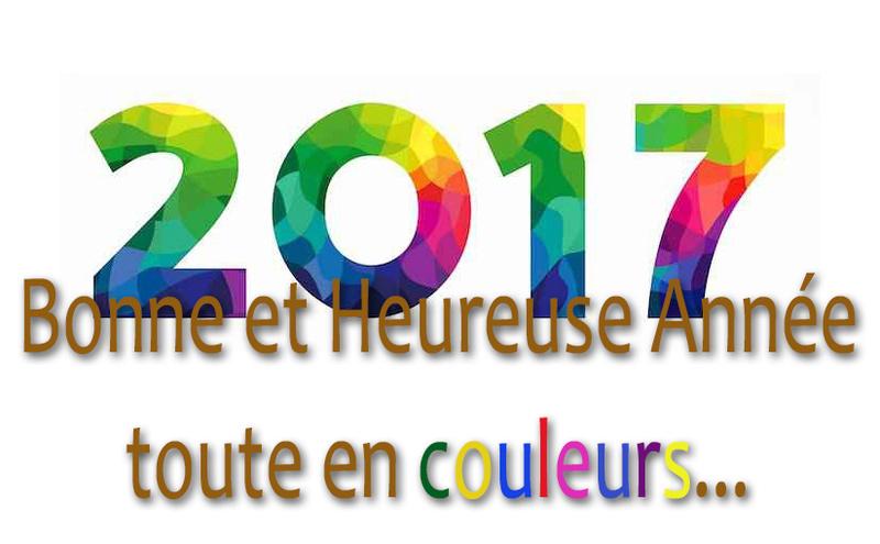 Meilleurs voeux pour 2017... Carte_10