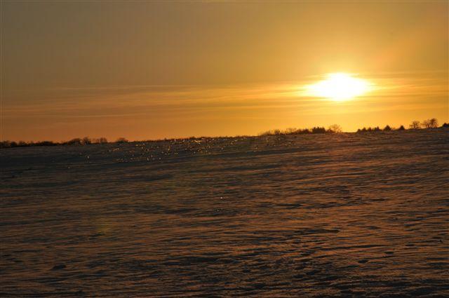 1er vol de l'année sous la neige... _dsc9810