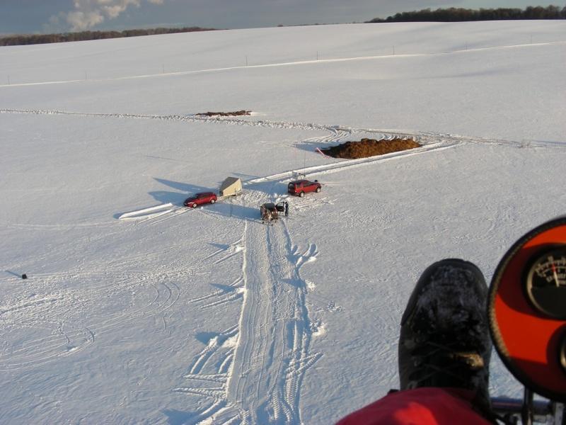 1er vol de l'année sous la neige... Birdy013