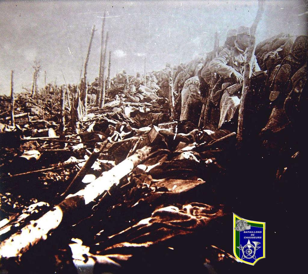 La guerre sur plaques... Meuse_51