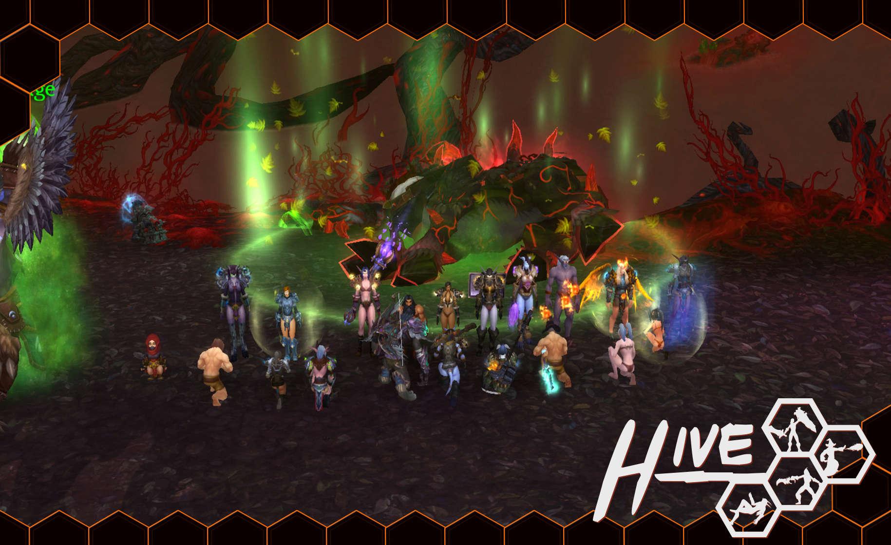 Hive, bienvenue chez nous! - Test Kill_s12