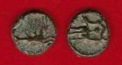Rare pour identifier ... Petit bronze au Rostre et au Capricorne (Forum Julii, Fréjus) Petit_10