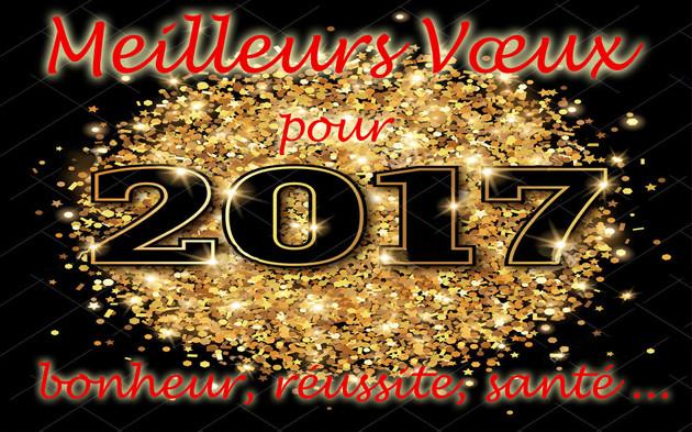 Une très bonne Nouvelle Année à tous ... Projet10
