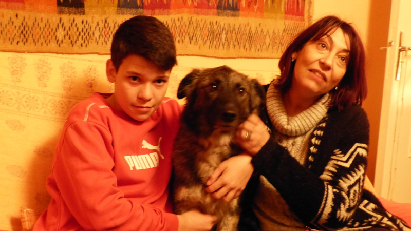 Post les chiens de Chantal - Page 3 P1190610