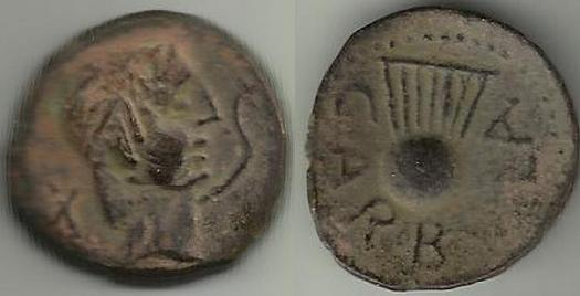 CARBULA 1104