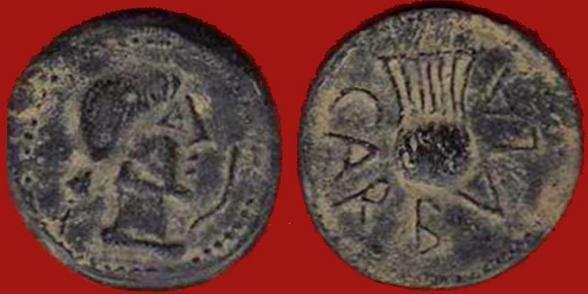 CARBULA 1105