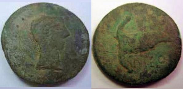 DIPO 1144