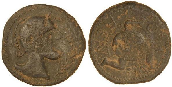 ILIBERRIS 1162