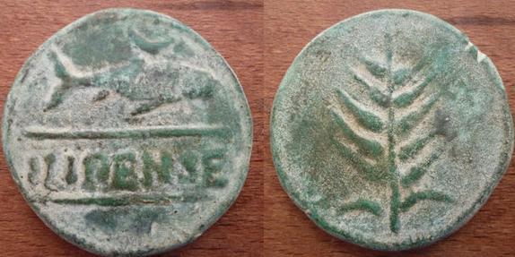 ILIPENSE 1169