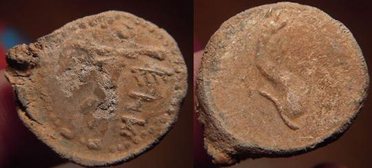 KETOVION-SALACIA 1180
