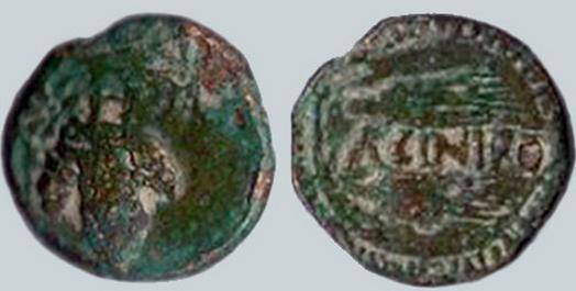 ACINIPO 188