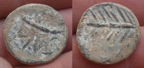 BAESURI 215