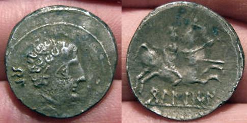 BELIKIOM 221