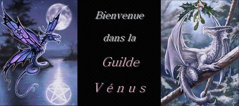 Forum de la guilde Venus du jeu Last Chaos
