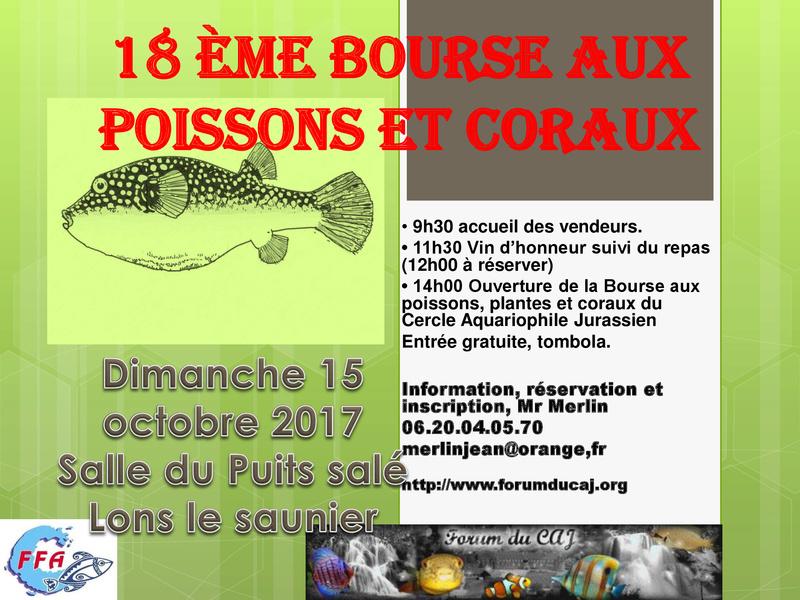 Concours affiche 17 ème bourse aux poissons. Bourse11
