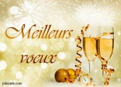 Nos meilleurs vœux pour la nouvelle année. Meille10