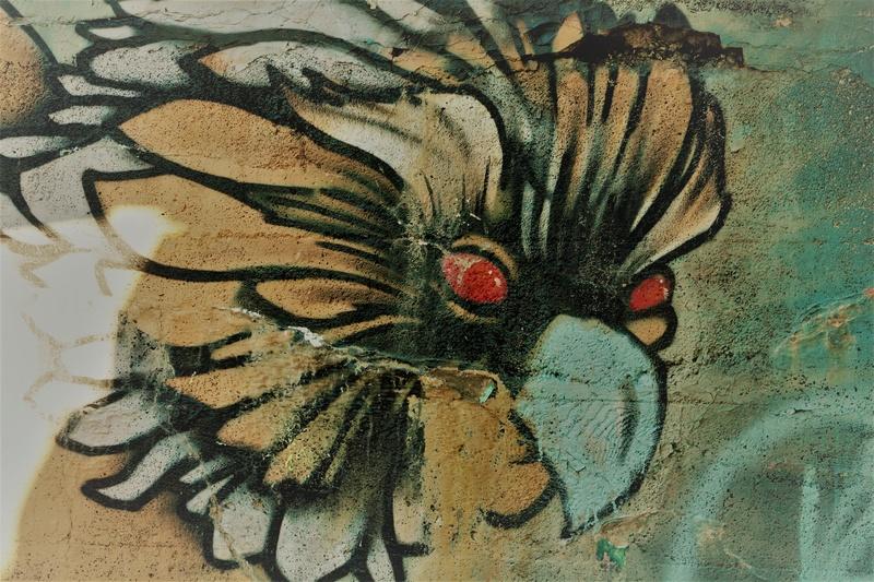 Graffitis  _mg_6413