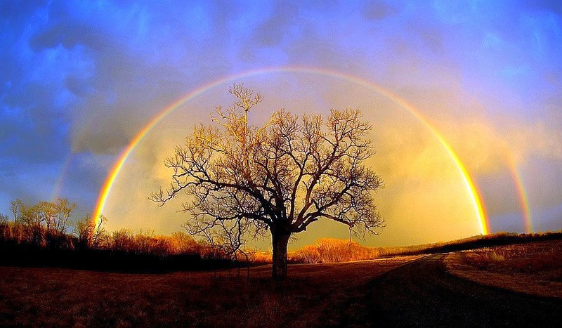 Quelle est votre vision sur Paradis Image10