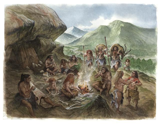 Description de la tribu Bc586410