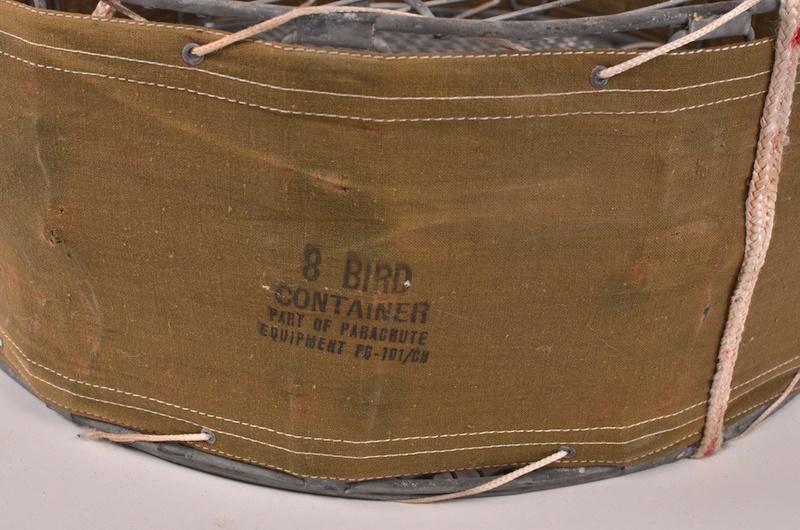 Les pigeons dans les transmissions Dsc_7010