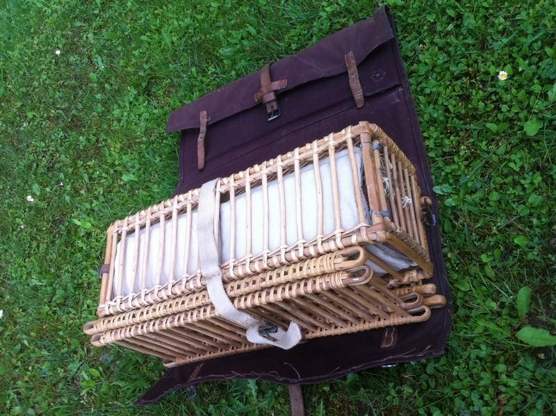Les pigeons dans les transmissions Img_3412