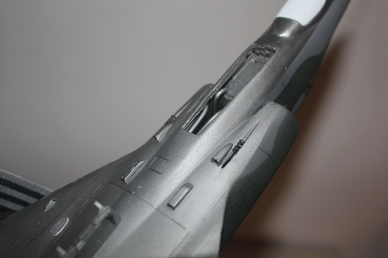 Mirage III E 1/32 revell - Page 6 Img_2111