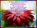 ТАТЬЯНИН ДЕНЬ Otkrit10