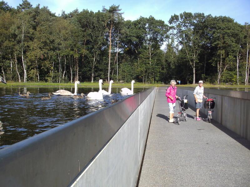 Wijers (Limburg) Bokrij14