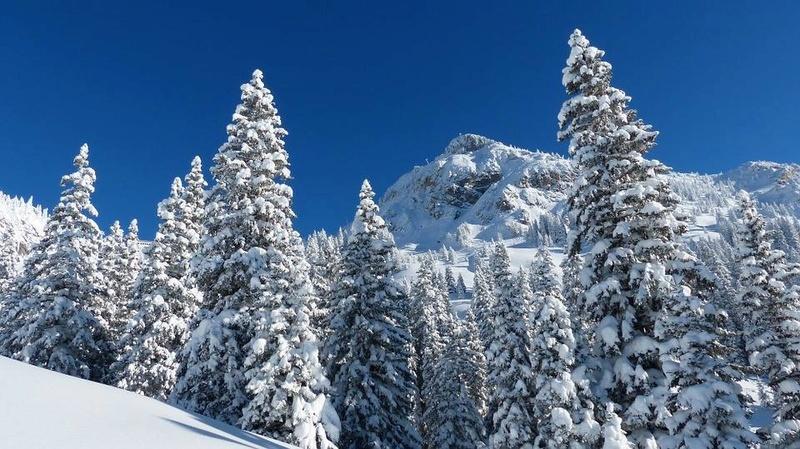 paysages enneigés de l'Autriche Tyrol10