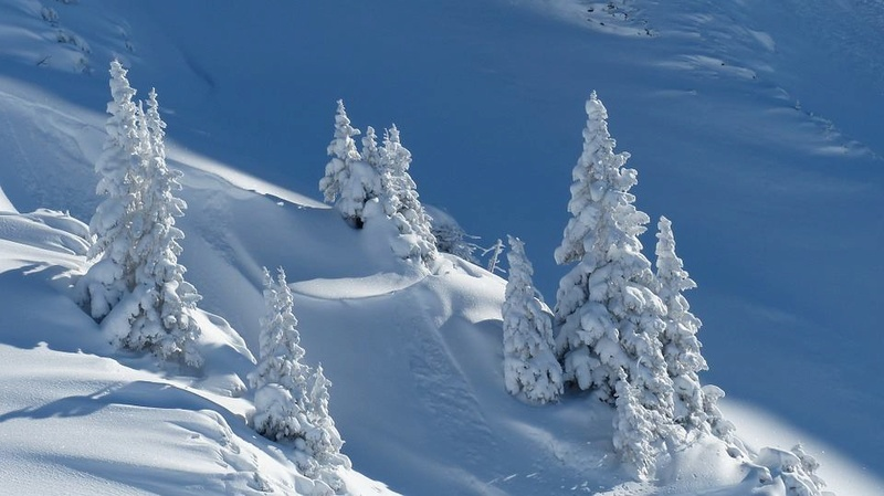 paysages enneigés de l'Autriche Tyrol110