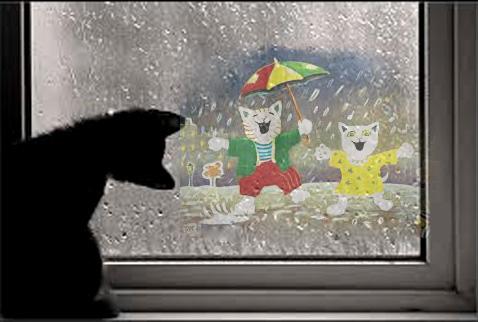 Les chats et la pluie Images10