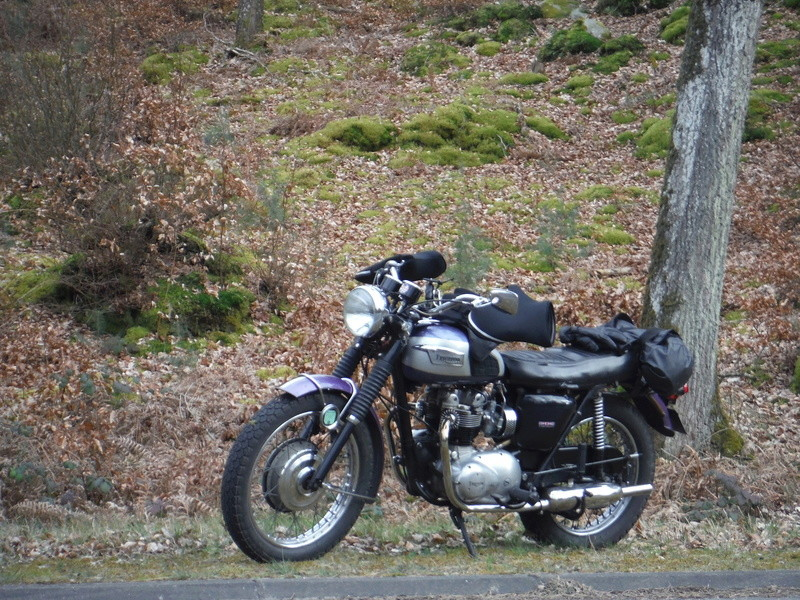 Galerie motos des fofoteurs * Dscf5811