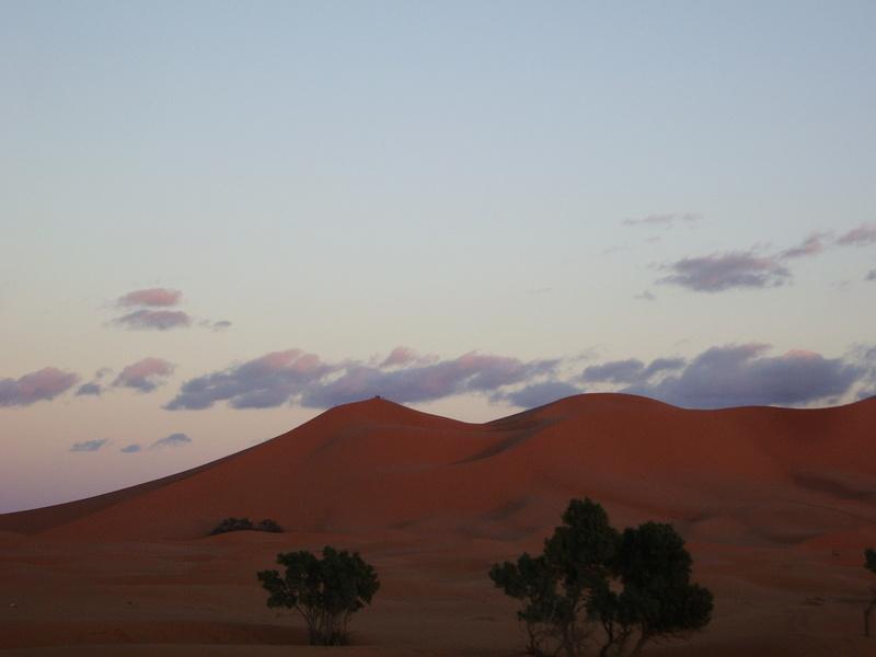 [Le désert] Recherche Dunes de sable 2006-019