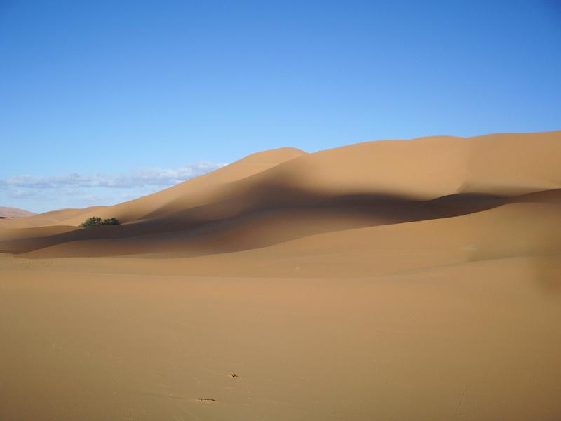 [Le désert] Recherche Dunes de sable 2006-020