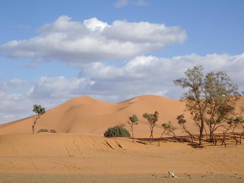 [Le désert] Recherche Dunes de sable 2006-021