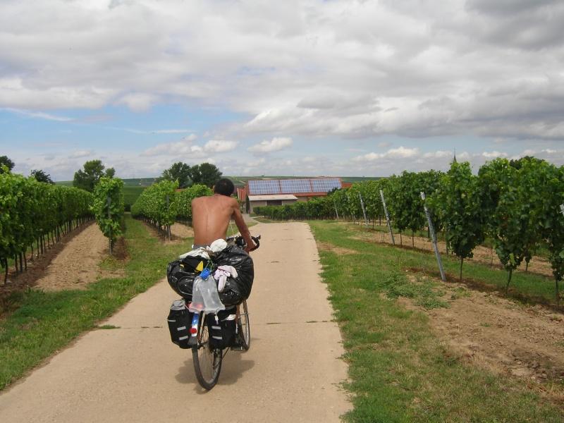 Récit du parcours Strasbourg => Mainz 2008 100_2010