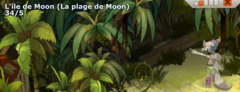 """[TUTORIAL] Donjon """"Le village Kanniboul"""" (Moon) ou la quête """"T'as les boules"""" Entrae10"""