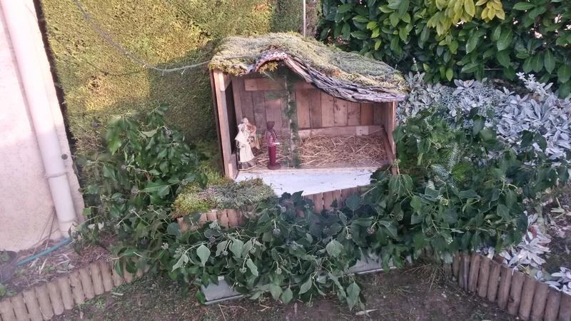 [Mini-tourbière] Bac enterré - Page 3 20161142