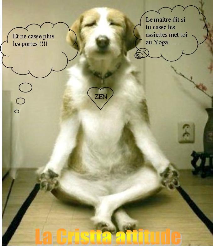 YOGA. Après le Reiki les attaque d'une yogiste sur la Magie. Yoga110